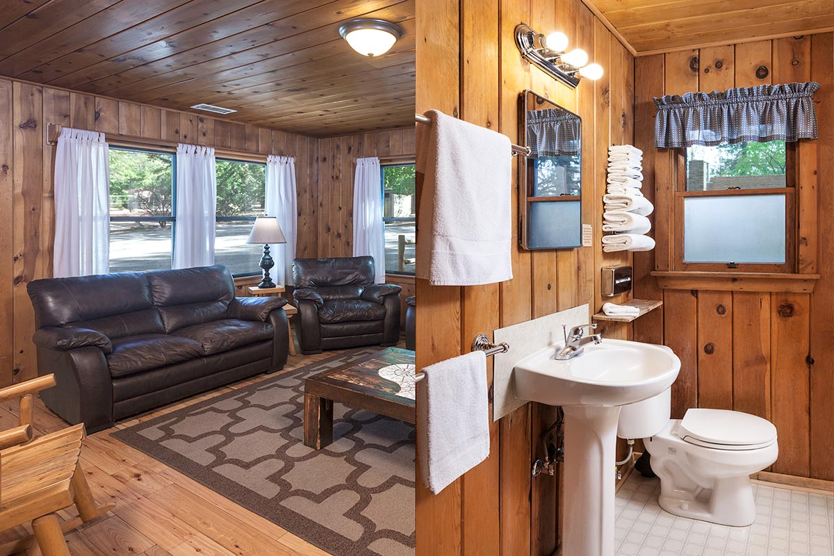 Cabin 5 Living Room & Bathroom